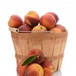 Basket of Yellow Peaches — Stock Photo