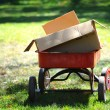 Red Wagon With Cardboard Boxes in Park Setting — Stock Photo