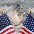 American Flags and Dog Tags — Stock Photo #47593987
