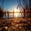 Sunset Over the lake — Foto Stock