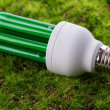 Energy saving light bulb on green grass - Stockfoto