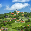 Panoramic view at beautiful village in Slovenia — Stock Photo