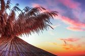 Vivid sunrise on a beautiful sandy beach with sunshade  — Stock Photo