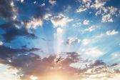 Beautiful cloudscape and flying bird, sunrise shot — Stock Photo