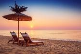 Lebendige Sonnenaufgangs-Wanderung auf einem schönen sandigen Strand mit Sonnenschirm — Stockfoto
