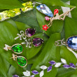 Jewelry at green leaves — Stock fotografie