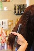 Taglio di capelli — Foto Stock