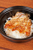 Eel with rice — Foto Stock