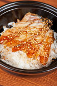 Eel with rice — Stock Photo