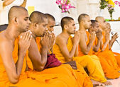 Monks Chanting — Stock Photo