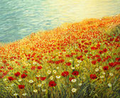 Poppies at the Seashore — ストック写真