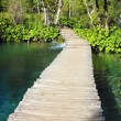 Wooden Pathway in Plitvice Lakes — Stock Photo