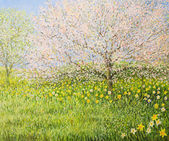 Springtime Impression — Stock Photo