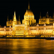 Budapest Parliament Night Shot — Stock Photo