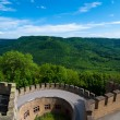 Hohenzollern Castle walls and surrounding forests — Stock Photo