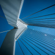 Stock Photo: Erasmus bridge