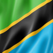 Tanzania flag — Stock Photo