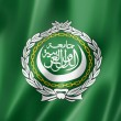 Arab League flag — Stock Photo