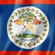 Belize flag — Stock Photo #23141866