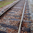Railroad tracks headed towards small town - Стоковая фотография