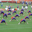 Stock Photo: Clemson football players stretching