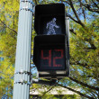 PedestriSignal at Cross Walk — ストック写真 #12110014