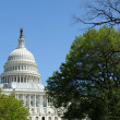 US Capitol, Washington, DC — Stock Photo #12110060