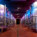 Italy: winemaking (franciacorta) — Stock Photo #13367971