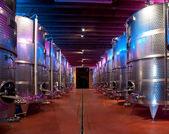 Italy: winemaking (franciacorta) — Photo