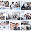 Collage of business people group working office — Stock Photo