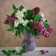 Lilac still life — Stock Photo