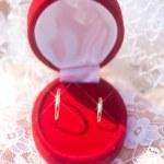 Wedding rings — Stock Photo #20722291