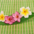 Frangipani and polished stone on bamboo mat — Stock Photo