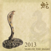 Caligrafia chinesa 2013 ano da serpente — Foto Stock
