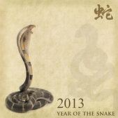 Kinesisk kalligrafi 2013 för år av orm — Stockfoto