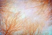 Träd med gamla grunge antika pappersstruktur — Stockfoto