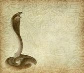 Ano 2013 da cobra com fundo de papel — Foto Stock