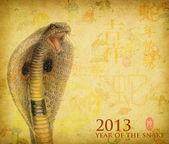 中国书法 2013 年的蛇 — 图库照片
