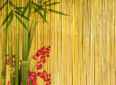 Bambu no antigo fundo de textura papel grunge — Foto Stock