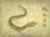 čínská kaligrafie 2013 rok hada — Stock fotografie