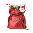 Colorful gift bag with ribbon and bow. — Foto Stock