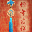 Chinese gift used during spring festival — Stock Photo #18468881