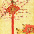 Chinese gift used during spring festival - Stock Photo