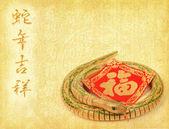 Chińska kaligrafia 2013 rok węża — Zdjęcie stockowe