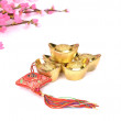 Chinese gold — Stock Photo #19107579