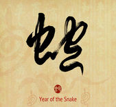 Chinese Calligraphy 2013 Year of the snake design — Zdjęcie stockowe