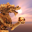 Chinese Golden Dragon Statue with sunset — Foto Stock
