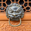 Bronze doorknocker with Lion — Stock fotografie