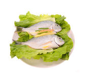 Fish in the plate — Stock Photo