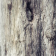 Old wood texture background - Zdjęcie stockowe